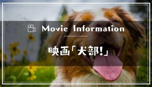 映画「犬部!」あらすじネタバレ結末|原作との違いやキャストと予告動画やロケ地も
